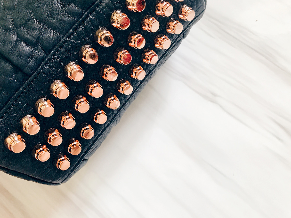 mini-rockie-bag-alexander-wang-stud-detail