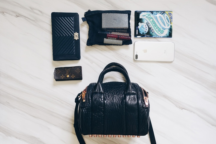 mini-rockie-bag-alexander-wang-whats-in-my-bag